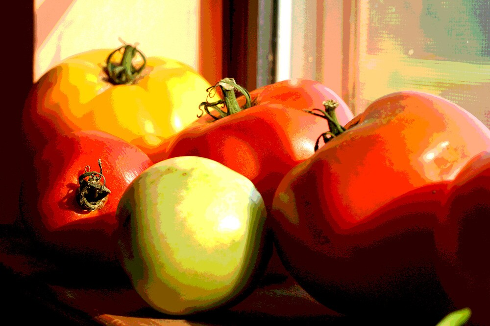 Posterized Tomatoes by AngelRivera