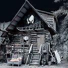 Musher's Cabin by Dyle Warren