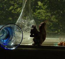 Sqirrel, Bubbles by Helena Haidner