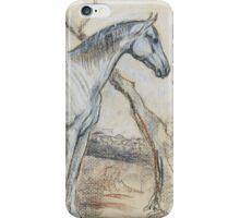 """""""Durango"""" iPhone Case/Skin"""