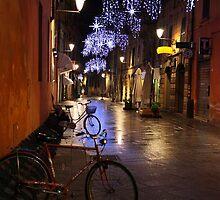 Reggio-Emilia, a Street View with Bicycles at Night. Emilia-Romagna, Italy 2009 by Igor Pozdnyakov