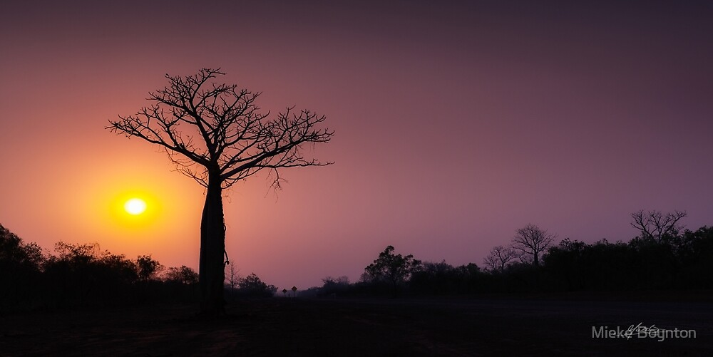 A Smouldering Sunset by Mieke Boynton