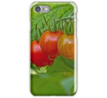 The Morning After an Evening Rain iPhone Case/Skin