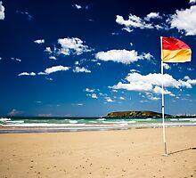 Swim between the Flag by Daniel Peut