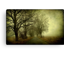 Empty way Canvas Print