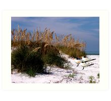 Ft. DeSoto Beach, As The Royal Terns Art Print
