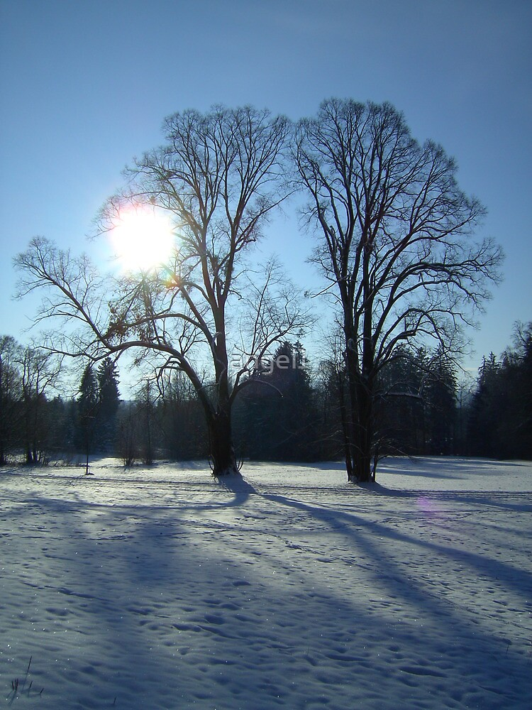 Bavarian Winter Wonderland  by ©The Creative  Minds