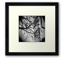 Shadows on Seneca 1 Framed Print