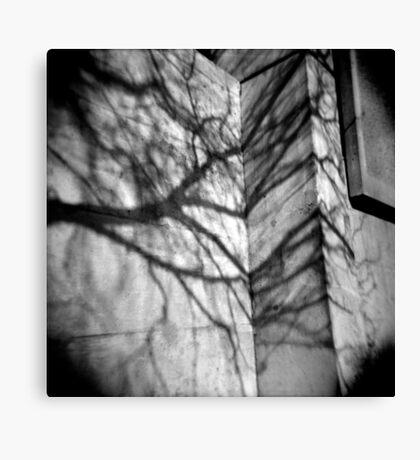 Shadows on Seneca 1 Canvas Print