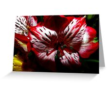 Touch Me Greeting Card
