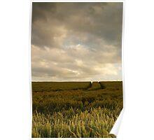 Crop field weathering storm... Poster