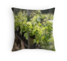 Vineyards- Margaret River W.A. Throw Pillow