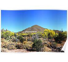 USERY MOUNTAIN REGIONAL PARK ARIZONA APRIL 2015 Poster