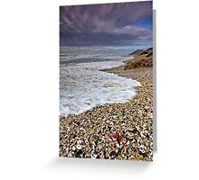 She sells sea shells ... Greeting Card