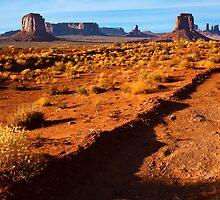 Arizona Sunset by Nickolay Stanev