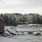 Herrick Cove, New Hampshire by brooke1429