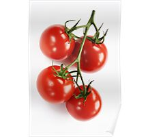 Tomatoes in daylight Poster