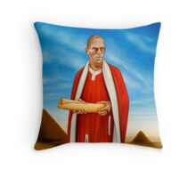 Song of the Sacred Ibis Throw Pillow