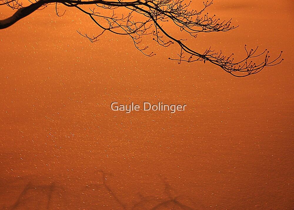 December Snow at Night by Gayle Dolinger