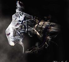 A Tiger Born of Smoke by Melissa Casole
