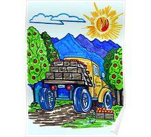 California Orange Harvest Poster