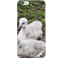 """"""" And this what all the fuss was about"""" iPhone Case/Skin"""