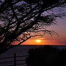 Sunset at Point Vicente by keng612