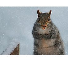 I'm Chilly!! Photographic Print