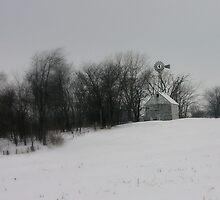 Iowa Winter by m1trLG2