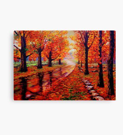 Rainy Maple Road Canvas Print