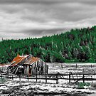 The Old Barn by NancyC
