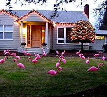 Dreaming of Home!  Decorated Floridian Xmas Yard in Oregon by Chuck Gardner
