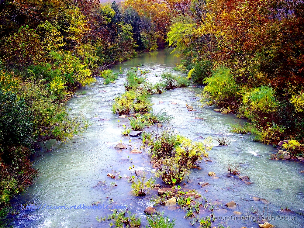 Rainbow Springs by NatureGreeting Cards ©ccwri