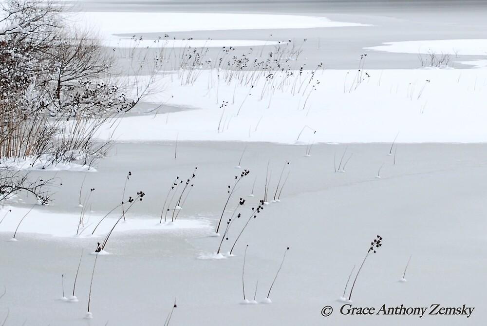 Winter Wisps by Grace Anthony Zemsky