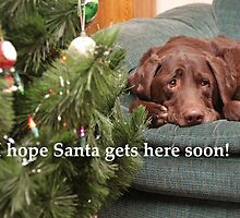 Waiting for Santa by Karl R. Martin