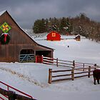 Blue Ridge Winter by Jane Best