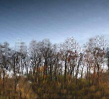 Water reflection IX!...  by sendao