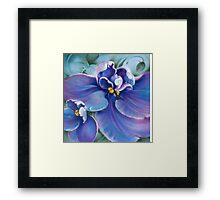 """The Violet"" Framed Print"