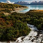 Pukaki Views by Robert Mullner