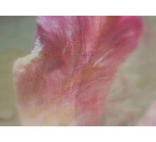 Pink Emotions - JUSTART ©  Photographic Print