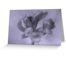 Textured Tulip - JUSTART ©  Greeting Card