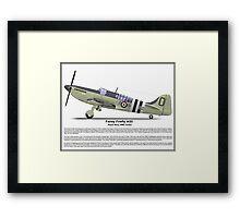 Fairey Firefly AS5 Profile Framed Print