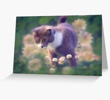 SULLY the INQUISITIVE (card) © Vicki Ferrari Photography Greeting Card