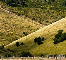 Hills ...with a fence. by Caroline Gorka