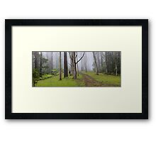 Amidst Mountain Ash Framed Print
