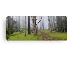 Amidst Mountain Ash Canvas Print