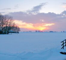 WINTER SOLSTICE - SHORTEST DAY of the YEAR by Johan  Nijenhuis