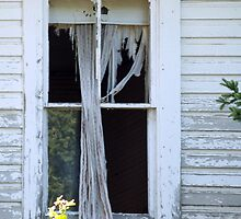 Abandoned House's Window by BCallahan
