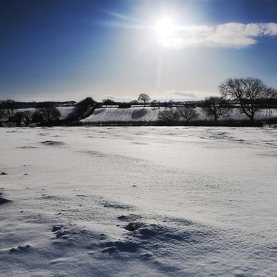 The Shortest Day _ Winter Solstice by Chris Charlesworth