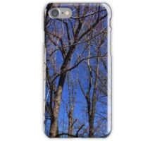 Treetops iPhone Case/Skin